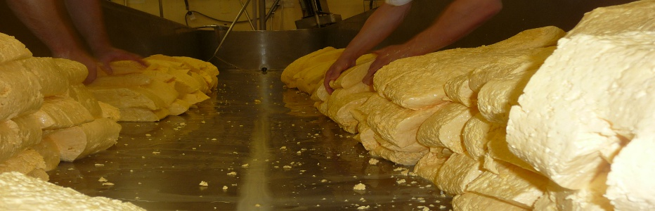 Hand crafting the finest small batches of traditionally hand-milled cheeses.